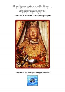 a collection of essential tsok offering prayers
