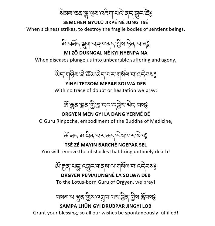 padmasambhava medicine puja